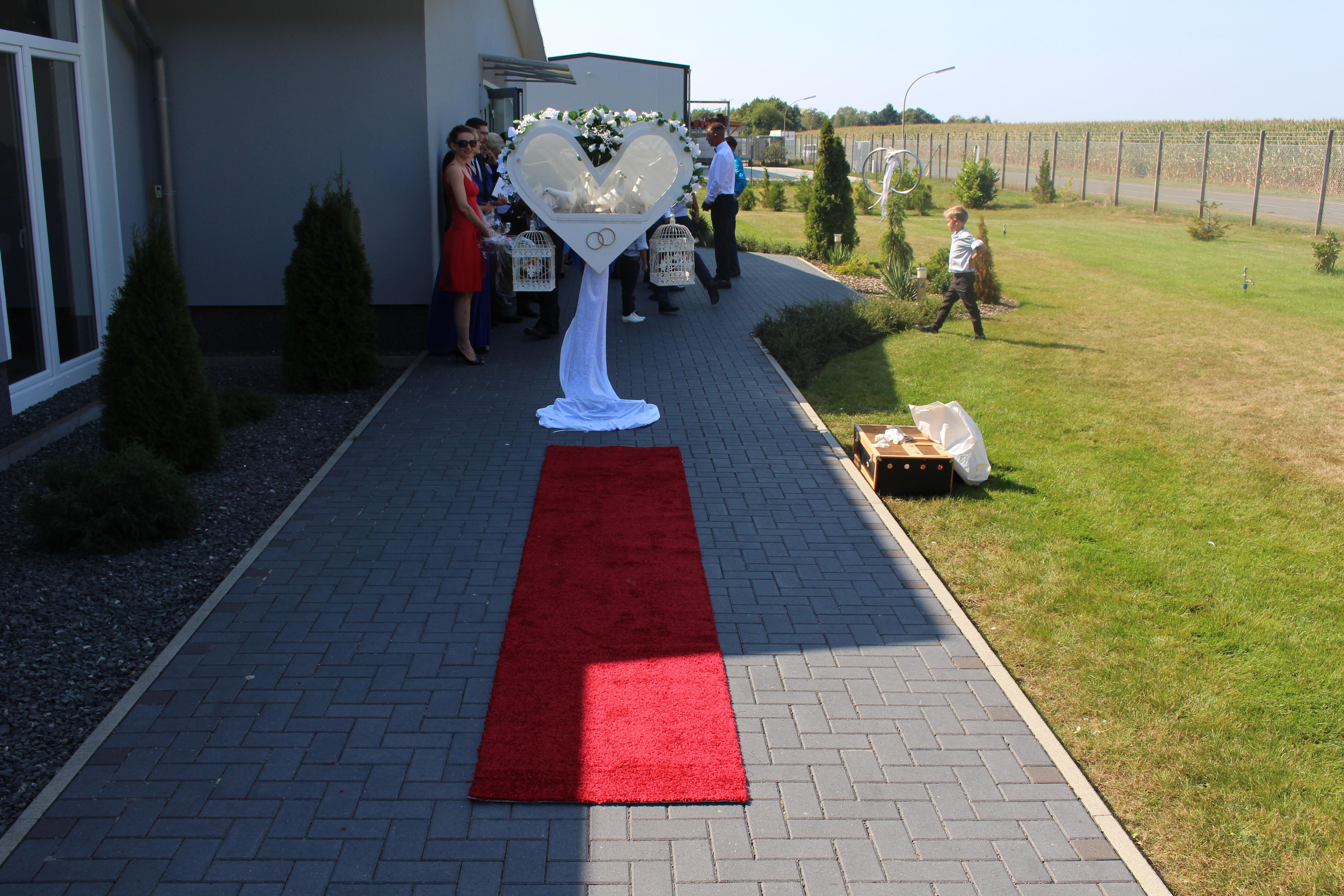 Hochzeitstauben Gifhorn